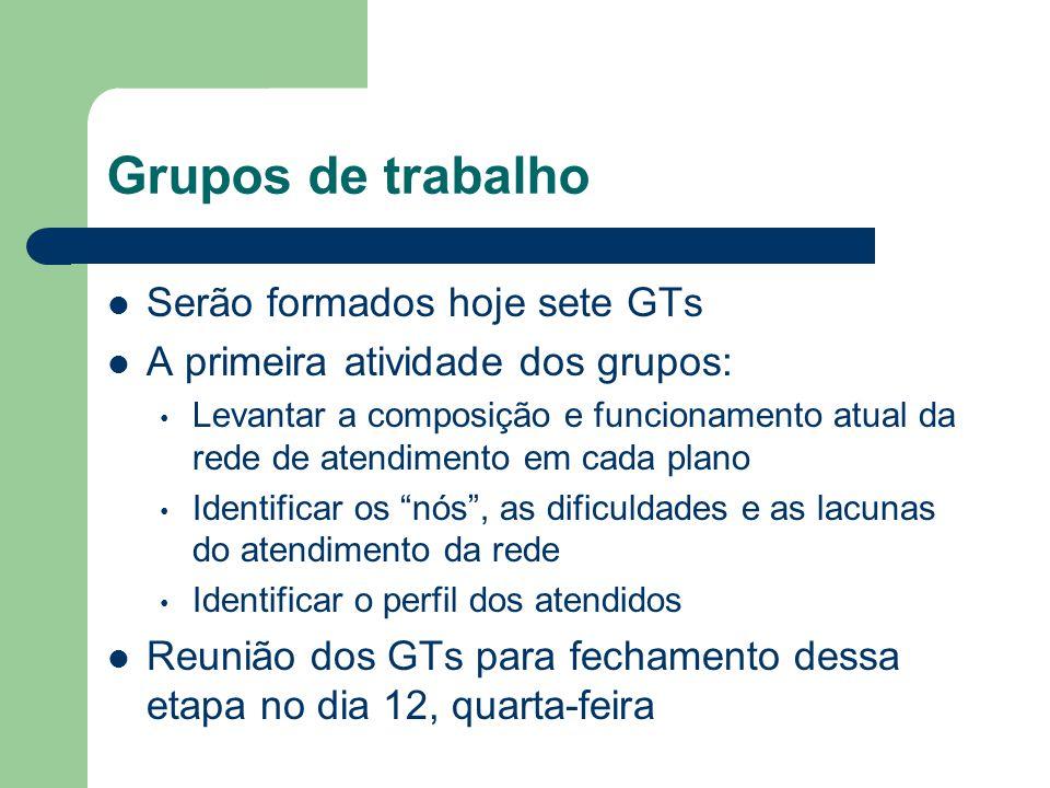 Grupos de trabalho Serão formados hoje sete GTs A primeira atividade dos grupos: Levantar a composição e funcionamento atual da rede de atendimento em
