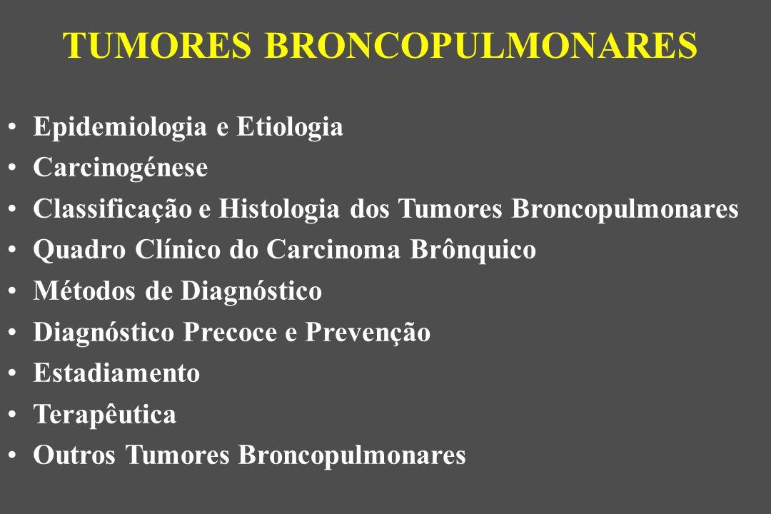 Epidemiologia e Etiologia Carcinogénese Classificação e Histologia dos Tumores Broncopulmonares Quadro Clínico do Carcinoma Brônquico Métodos de Diagnóstico Diagnóstico Precoce e Prevenção Estadiamento Terapêutica Outros Tumores Broncopulmonares TUMORES BRONCOPULMONARES
