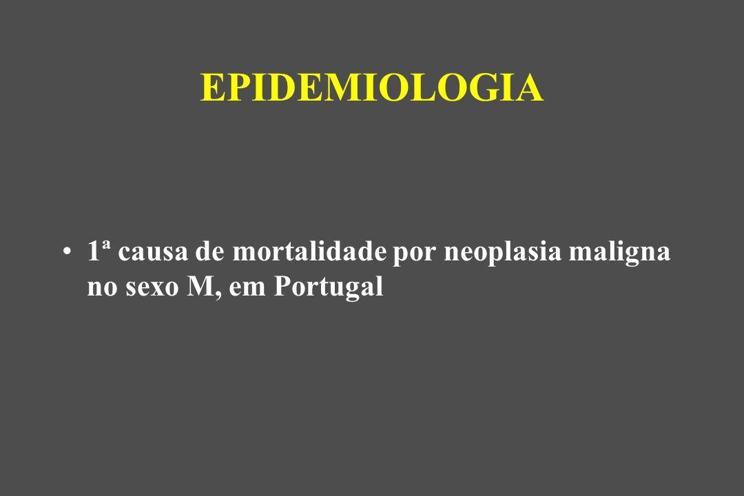 1ª causa de mortalidade por neoplasia maligna no sexo M, em Portugal EPIDEMIOLOGIA