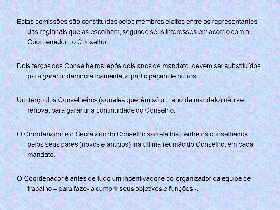 Estas comissões são constituídas pelos membros eleitos entre os representantes das regionais que as escolhem, segundo seus interesses em acordo com o