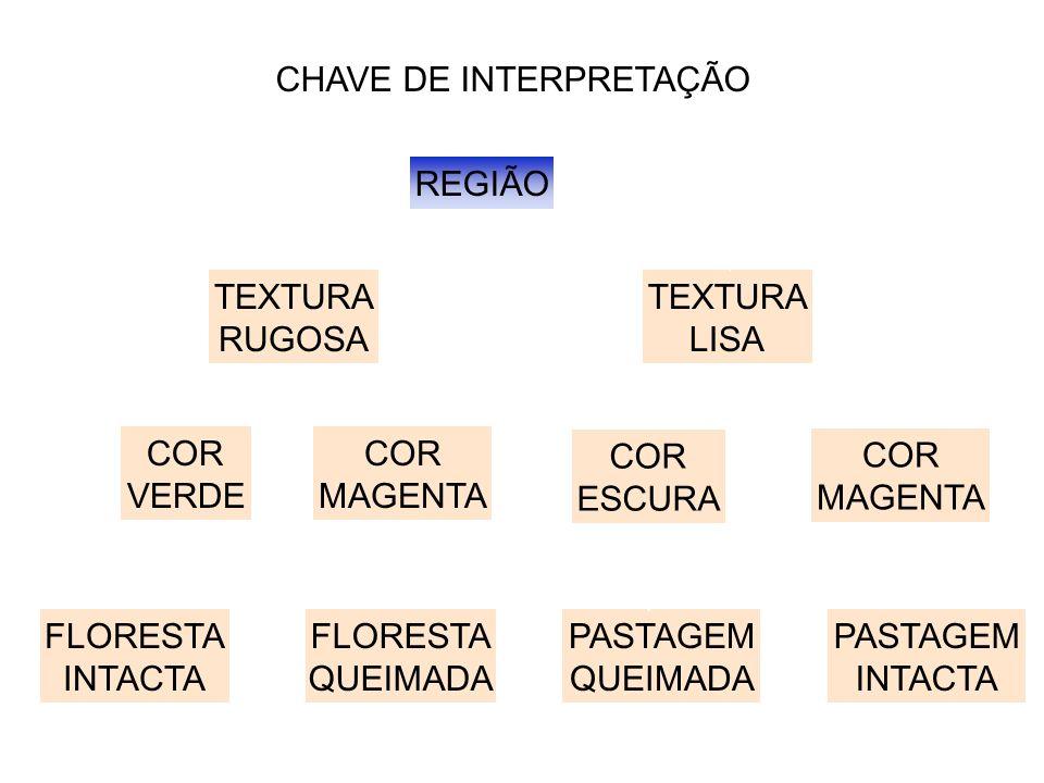 CHAVE DE INTERPRETAÇÃO REGIÃO TEXTURA RUGOSA TEXTURA LISA COR VERDE COR MAGENTA COR MAGENTA COR ESCURA PASTAGEM INTACTA PASTAGEM QUEIMADA FLORESTA QUE