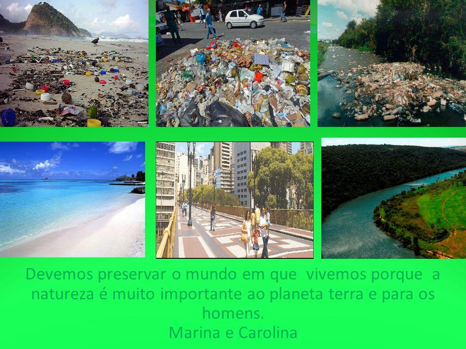 Devemos preservar o mundo em que vivemos porque a natureza é muito importante ao planeta terra e para os homens. Marina e Carolina