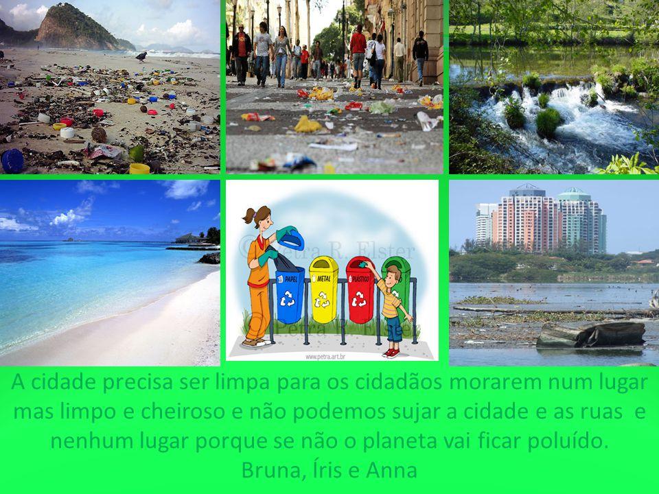 A cidade precisa ser limpa para os cidadãos morarem num lugar mas limpo e cheiroso e não podemos sujar a cidade e as ruas e nenhum lugar porque se não