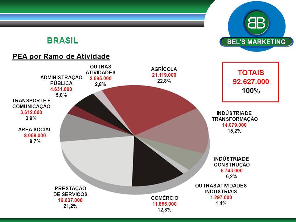 BRASIL PEA por Ramo de Atividade AGRÍCOLA 21.119.000 22,8% INDÚSTRIA DE TRANSFORMAÇÃO 14.079.000 15,2% INDÚSTRIA DE CONSTRUÇÃO 5.743.000 6,2% OUTRAS A