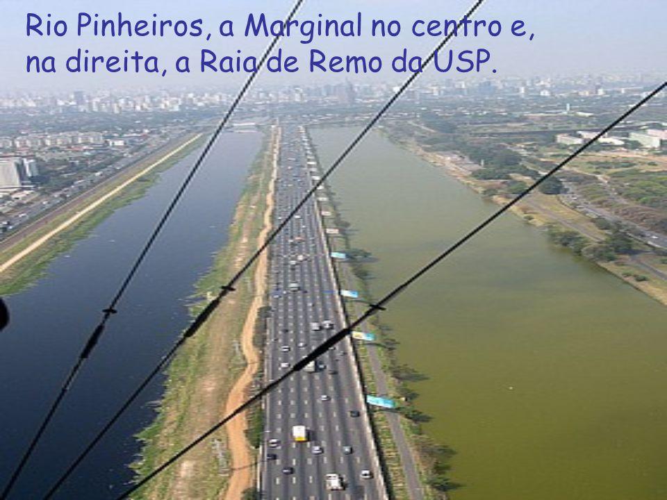 Rio Pinheiros, a Marginal no centro e, na direita, a Raia de Remo da USP.