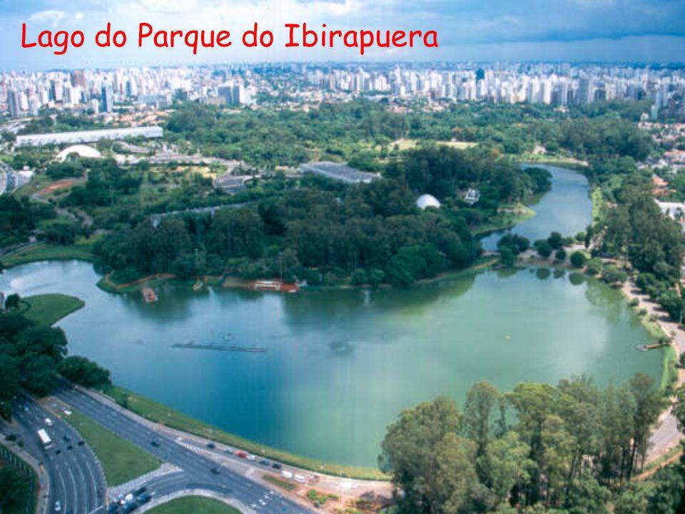 Lago do Parque do Ibirapuera