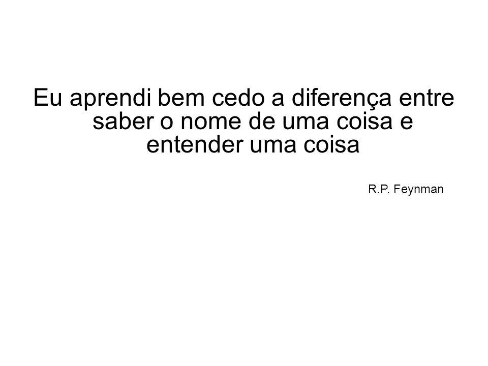 Eu aprendi bem cedo a diferença entre saber o nome de uma coisa e entender uma coisa R.P. Feynman