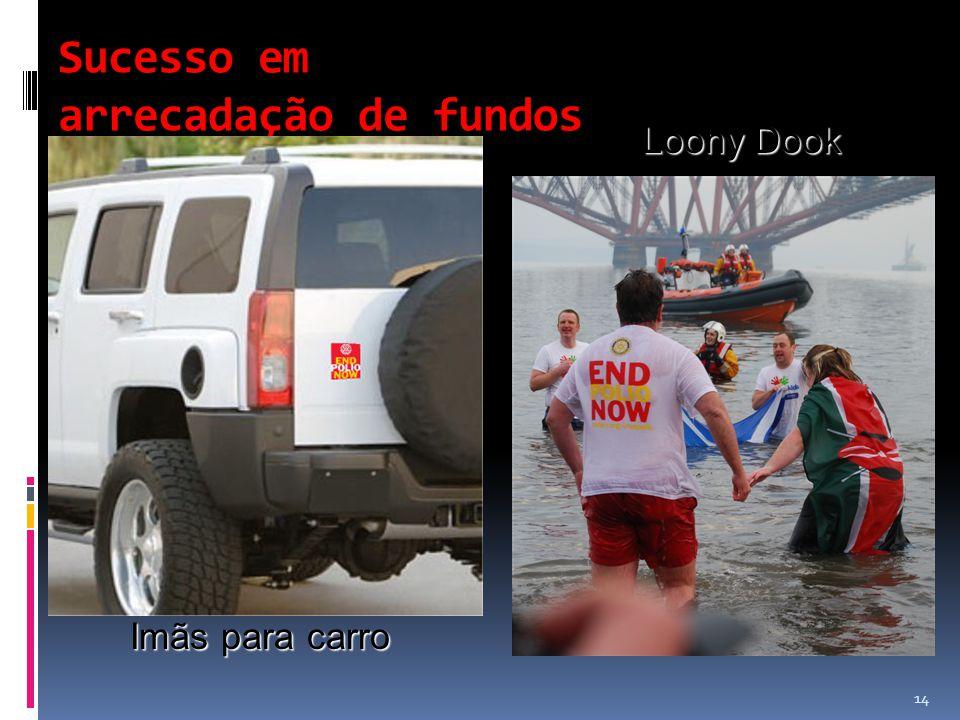 Sucesso em arrecadação de fundos Imãs para carro Loony Dook 14
