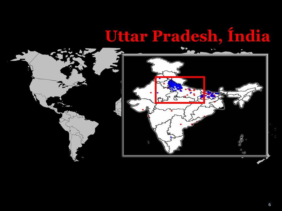 Uttar Pradesh, Índia 6