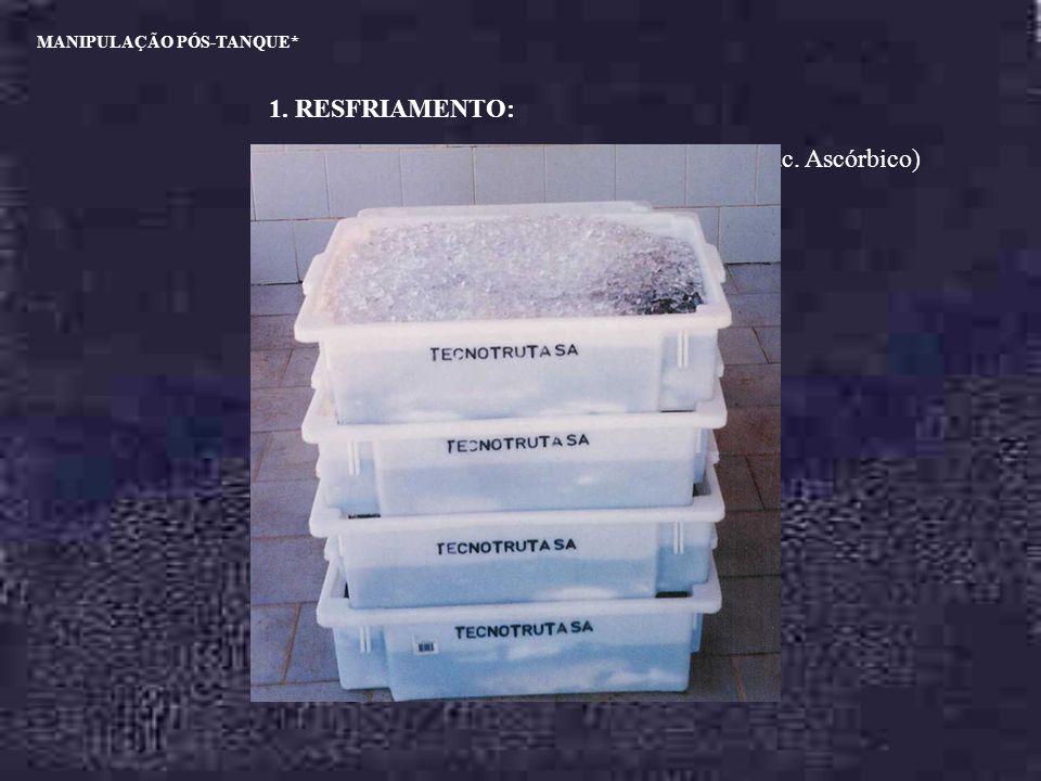 MANIPULAÇÃO PÓS-TANQUE* - gelo (oxidação externa: 1 min. Sol. 0,5% ac. Ascórbico) - geladeira (5ºC : 5 a 6 dias) - origem do gelo - formas do gelo - r
