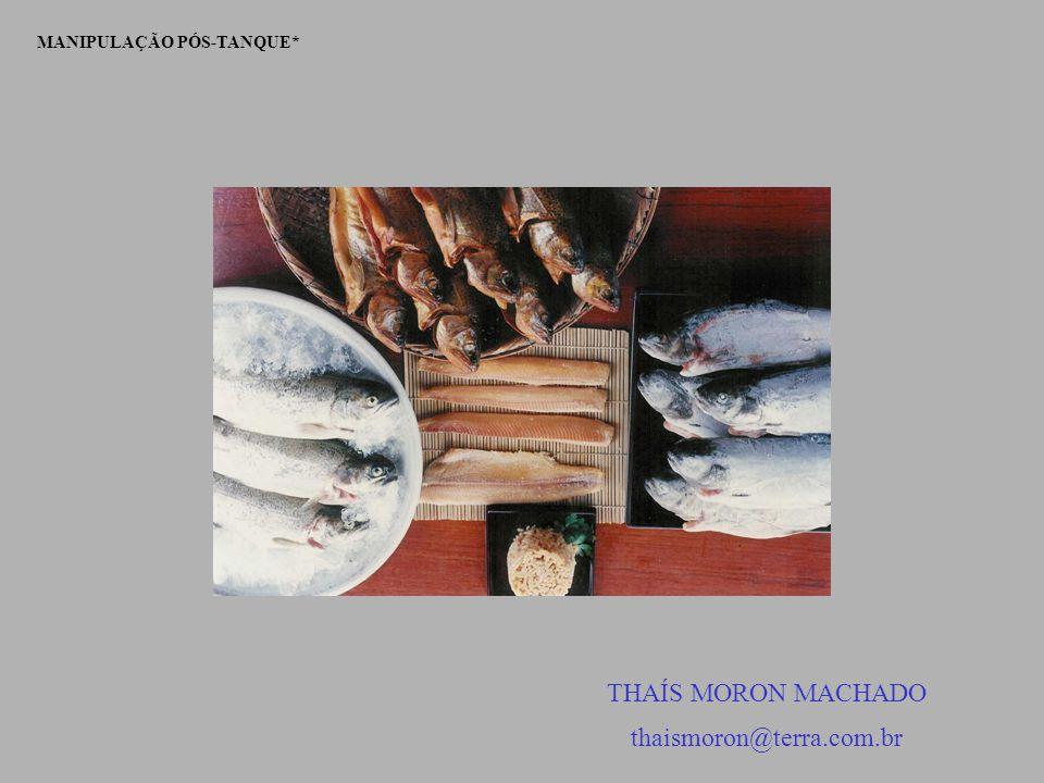 MANIPULAÇÃO PÓS-TANQUE* THAÍS MORON MACHADO thaismoron@terra.com.br