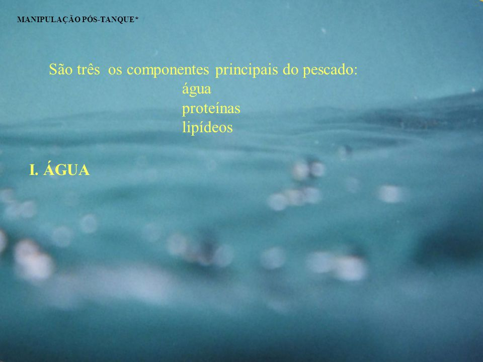 São três os componentes principais do pescado: água proteínas lipídeos MANIPULAÇÃO PÓS-TANQUE* I. ÁGUA