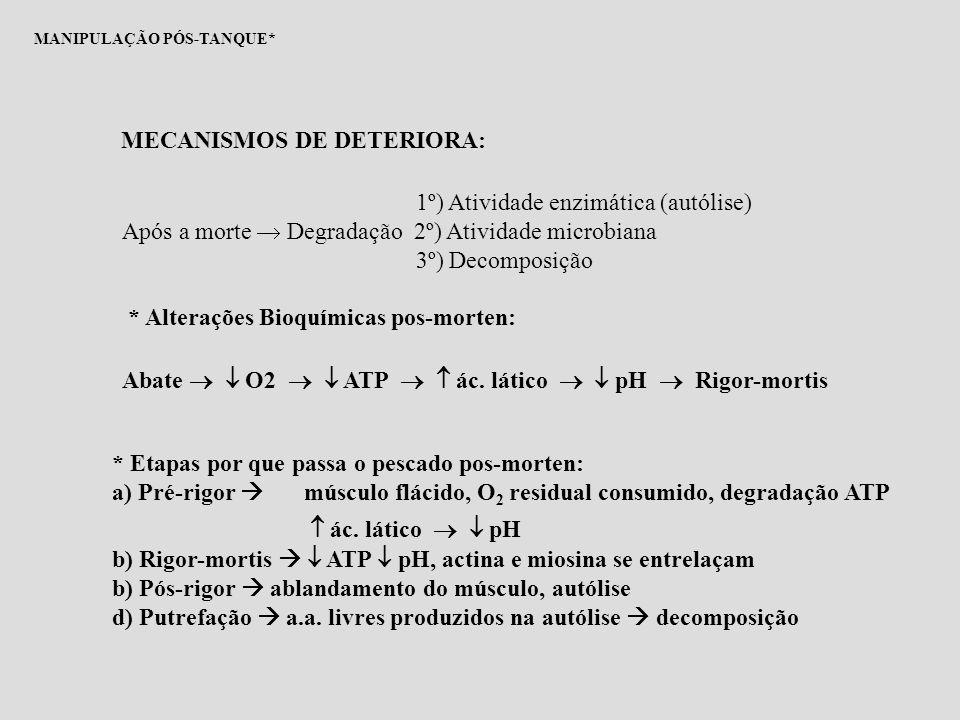 MANIPULAÇÃO PÓS-TANQUE* FATORES QUE INFLUEM NO ESTABELECIMENTO DO RIGOR-MORTIS:  Grau de exaustão  Condição física  Tamanho  Temperatura O OBJETIVO MAIOR É RETARDAR AO MÁXIMO A ENTRADA EM RIGOR-MORTIS POIS, PASSADA ESTA FASE, INICIA-SE A DECOMPOSIÇÃO!!! ABATE