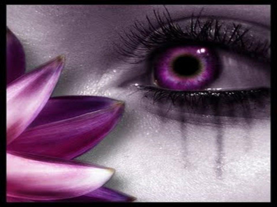 Eu OPTO pela serenidade... Harmonia! OPTO pelo amor...