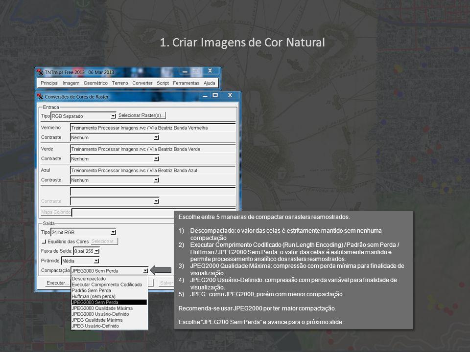1. Criar Imagens de Cor Natural Escolhe entre 5 maneiras de compactar os rasters reamostrados.