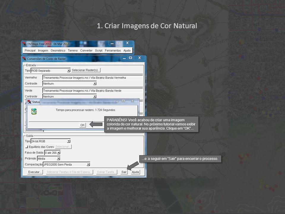 1. Criar Imagens de Cor Natural PARABÉNS. Você acabou de criar uma imagem colorida de cor natural.