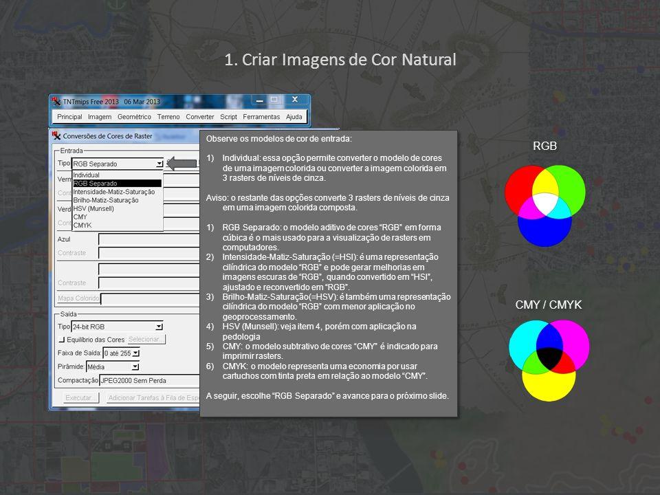 1. Criar Imagens de Cor Natural RGB CMY / CMYK Observe os modelos de cor de entrada: 1)Individual: essa opção permite converter o modelo de cores de u