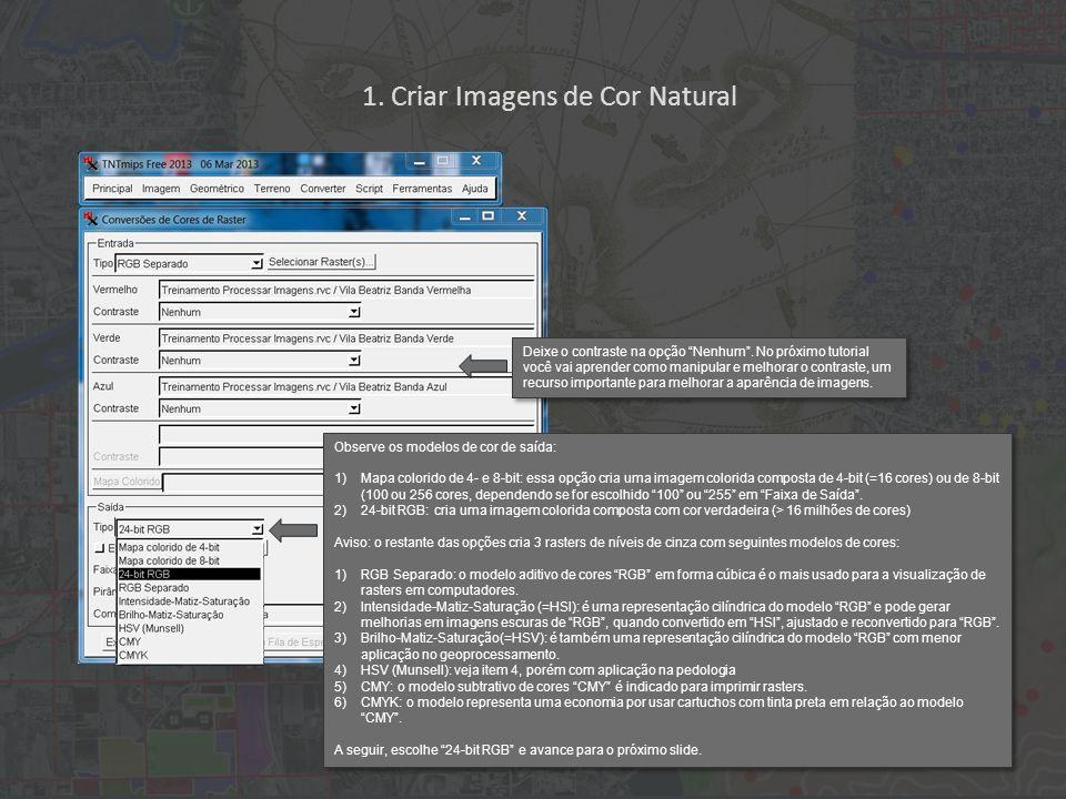 1. Criar Imagens de Cor Natural Observe os modelos de cor de saída: 1)Mapa colorido de 4- e 8-bit: essa opção cria uma imagem colorida composta de 4-b