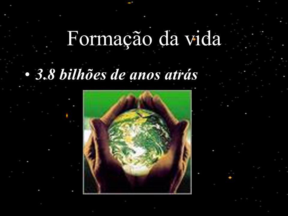 Formação da Terra 4.5 bilhões de anos atrás Ambiente inóspito para os seres vivos
