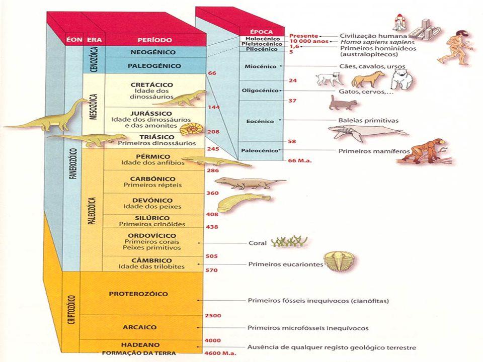 Formação da vida 3.8 bilhões de anos atrás