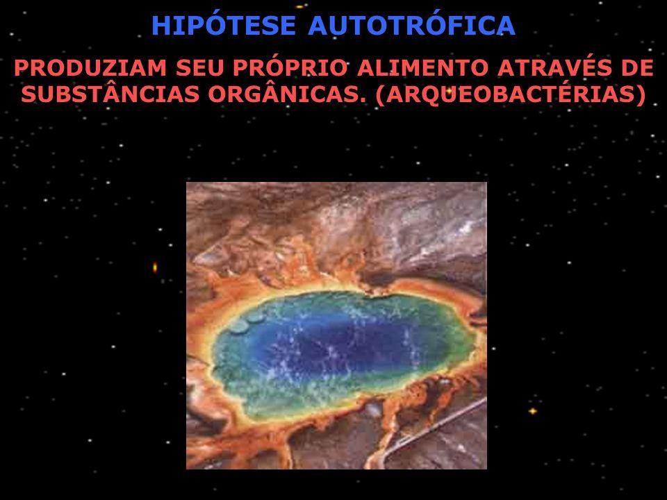 PRIMEIRO SER VIVO HIPÓTESE HETEROTRÓFICA PRIMEIROS SERES VIVOS NÃO ERAM CAPAZES DE PRODUZIR SEU PRÓPRIO ALIMENTO. ACREDITA-SE QUE, COM A ESCASSEZ DO A