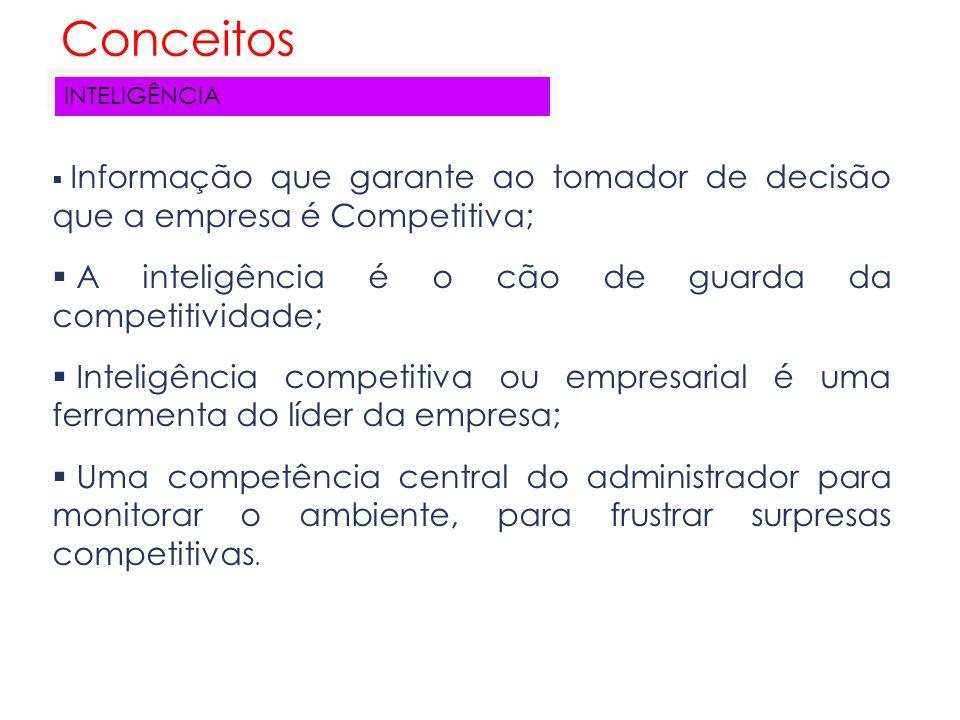  Informação que garante ao tomador de decisão que a empresa é Competitiva;  A inteligência é o cão de guarda da competitividade;  Inteligência comp