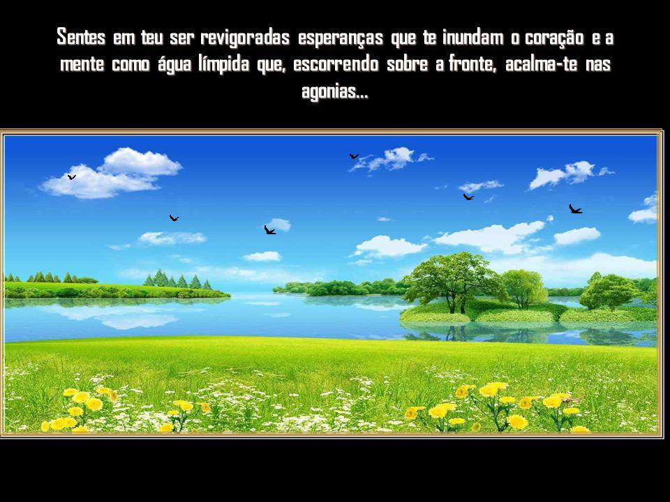 Almejas renovar-te e seguir caminhos gloriosos que a vida te oferece...