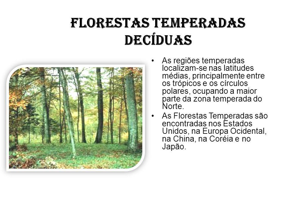 FLORESTAS TEMPERADAS DECÍDUAS As regiões temperadas localizam-se nas latitudes médias, principalmente entre os trópicos e os círculos polares, ocupand