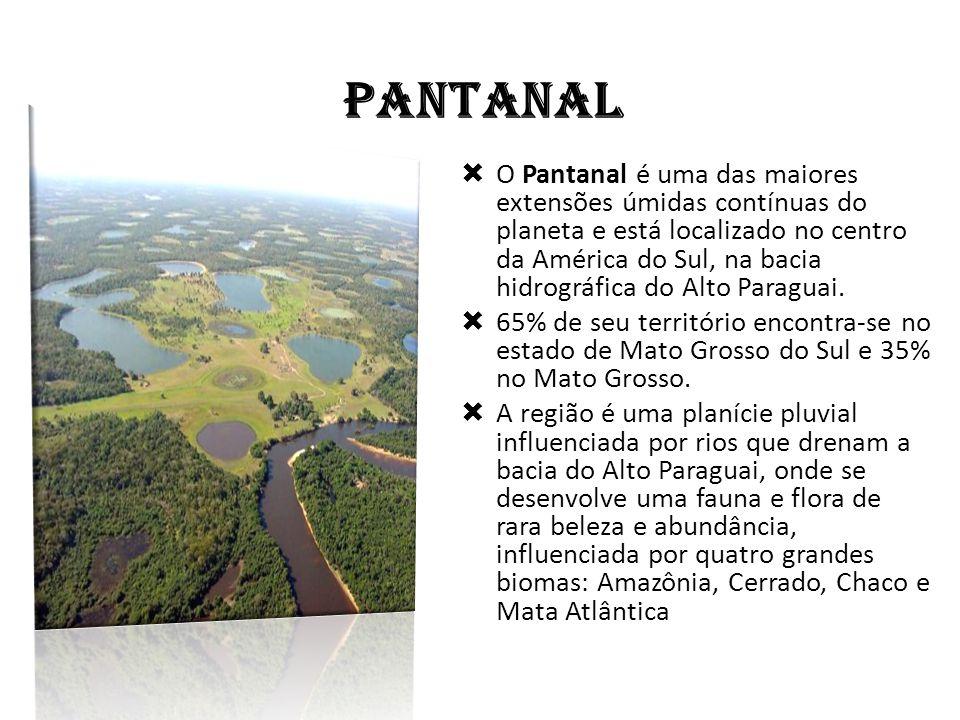 PANTANAL  O Pantanal é uma das maiores extensões úmidas contínuas do planeta e está localizado no centro da América do Sul, na bacia hidrográfica do