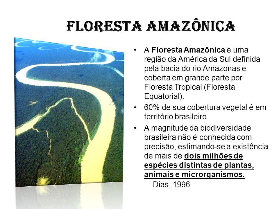 FLORESTA AMAZÔNICA A Floresta Amazônica é uma região da América da Sul definida pela bacia do rio Amazonas e coberta em grande parte por Floresta Trop