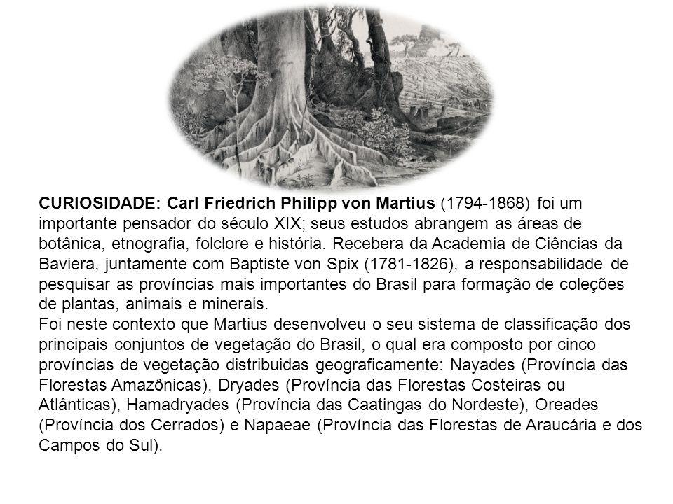 CURIOSIDADE: Carl Friedrich Philipp von Martius (1794-1868) foi um importante pensador do século XIX; seus estudos abrangem as áreas de botânica, etno