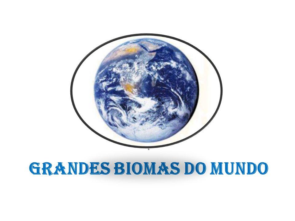 Grandes Biomas do mundo.