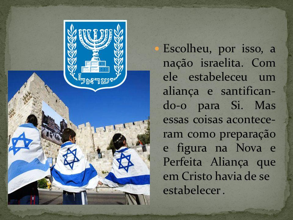 Escolheu, por isso, a nação israelita. Com ele estabeleceu um aliança e santifican- do-o para Si. Mas essas coisas acontece- ram como preparação e fig