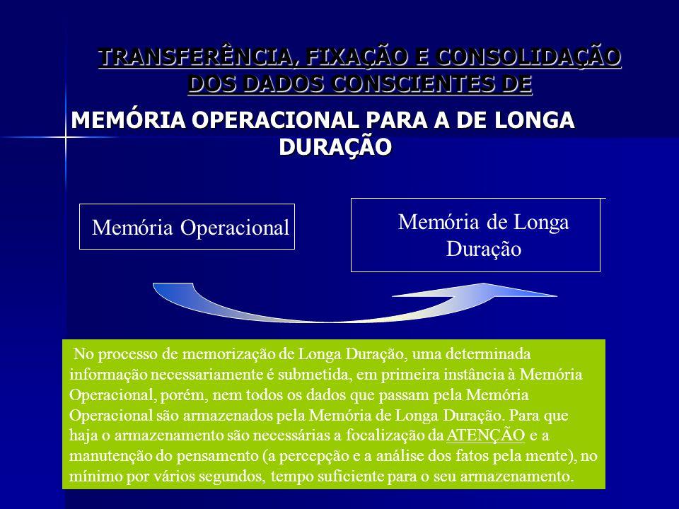 TRANSFERÊNCIA, FIXAÇÃO E CONSOLIDAÇÃO DOS DADOS CONSCIENTES DE MEMÓRIA OPERACIONAL PARA A DE LONGA DURAÇÃO Memória Operacional Memória de Longa Duraçã