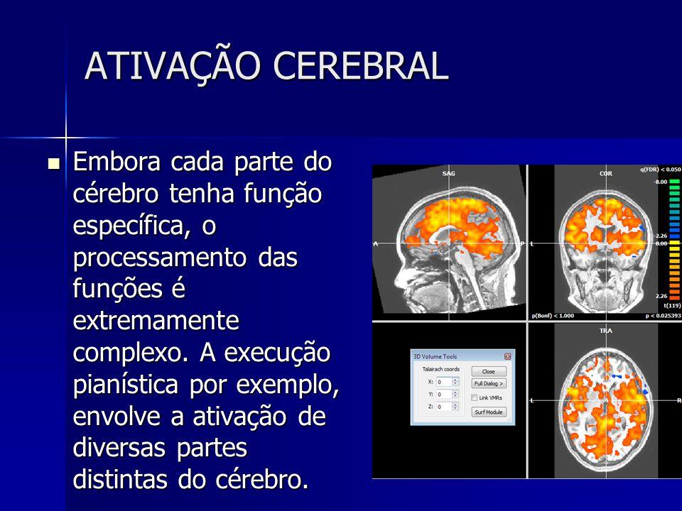 ATIVAÇÃO CEREBRAL Embora cada parte do cérebro tenha função específica, o processamento das funções é extremamente complexo. A execução pianística por
