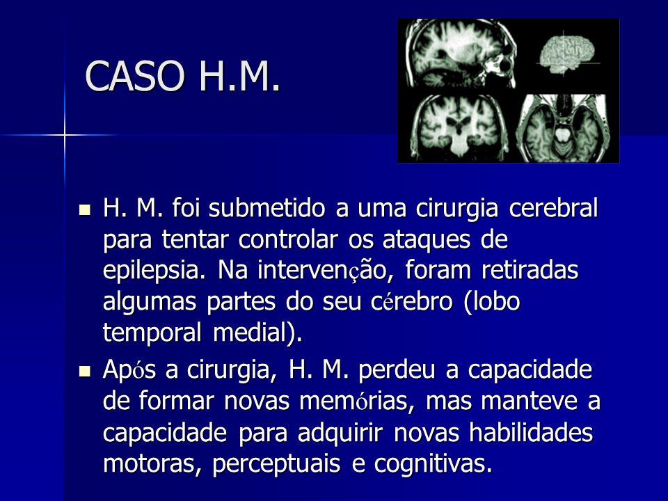 CASO H.M. H. M. foi submetido a uma cirurgia cerebral para tentar controlar os ataques de epilepsia. Na interven ç ão, foram retiradas algumas partes