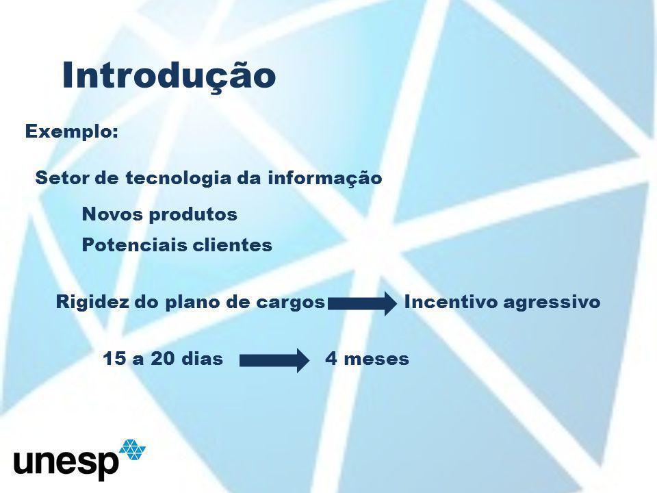 Introdução Exemplo: Setor de tecnologia da informação Novos produtos Potenciais clientes Rigidez do plano de cargosIncentivo agressivo 15 a 20 dias4 meses