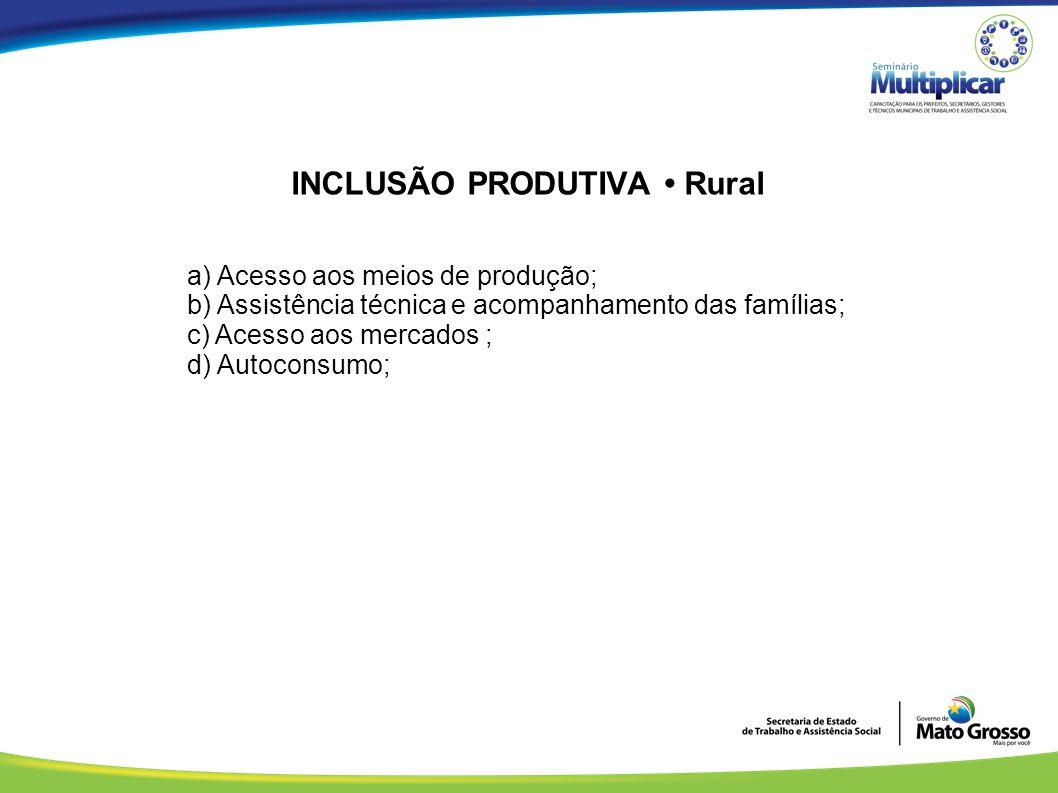 INCLUSÃO PRODUTIVA Rural a) Acesso aos meios de produção; b) Assistência técnica e acompanhamento das famílias; c) Acesso aos mercados ; d) Autoconsum