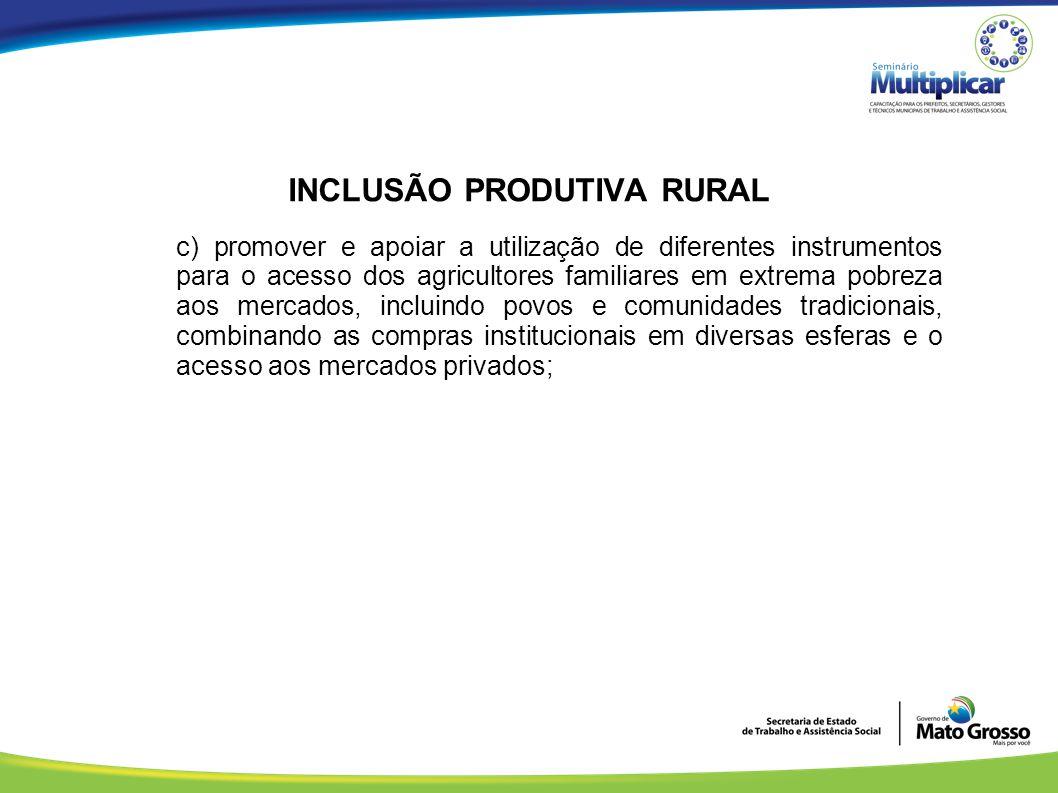 INCLUSÃO PRODUTIVA RURAL c) promover e apoiar a utilização de diferentes instrumentos para o acesso dos agricultores familiares em extrema pobreza aos