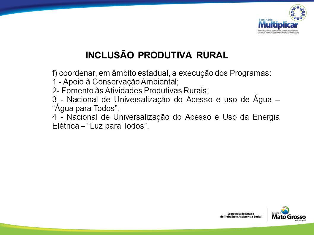 INCLUSÃO PRODUTIVA RURAL f) coordenar, em âmbito estadual, a execução dos Programas: 1 - Apoio à Conservação Ambiental; 2- Fomento às Atividades Produ