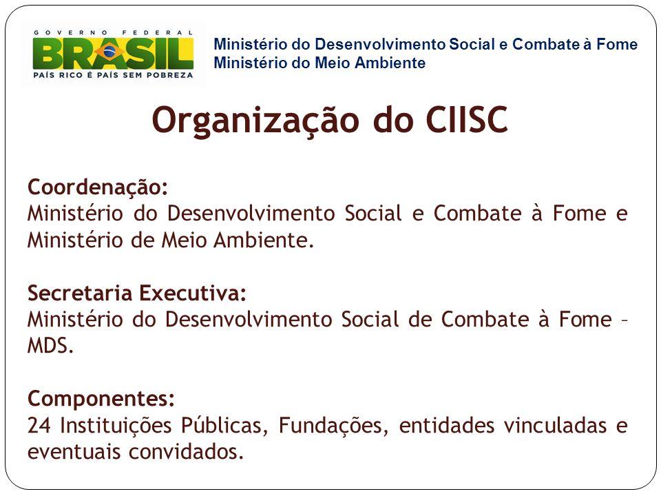 Organização do CIISC Coordenação: Ministério do Desenvolvimento Social e Combate à Fome e Ministério de Meio Ambiente. Secretaria Executiva: Ministéri