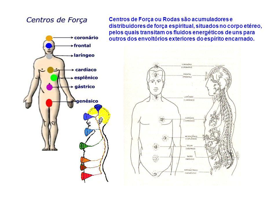 Centros de Força ou Rodas são acumuladores e distribuidores de força espiritual, situados no corpo etéreo, pelos quais transitam os fluidos energético