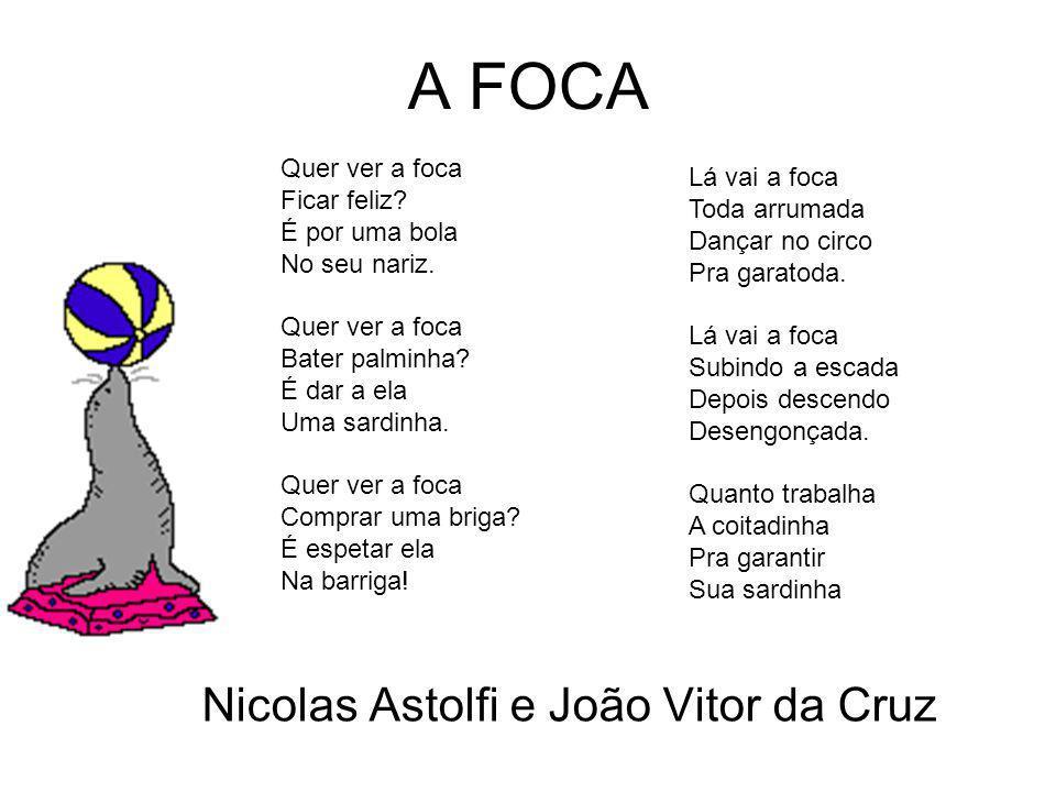 Nicolas e João Vitor da Cruz