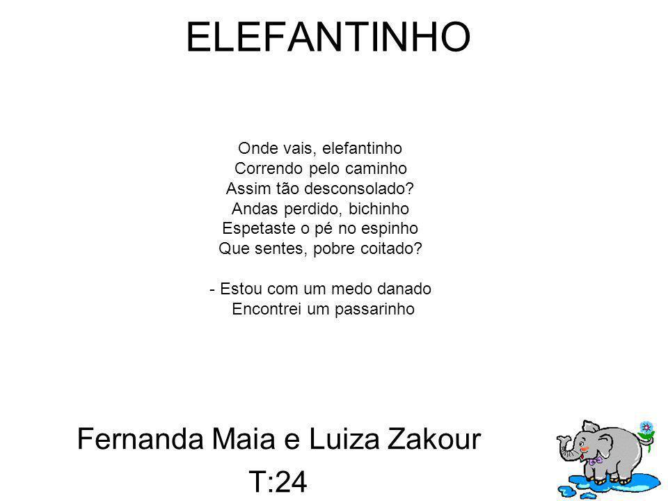 Fernanda e Luiza