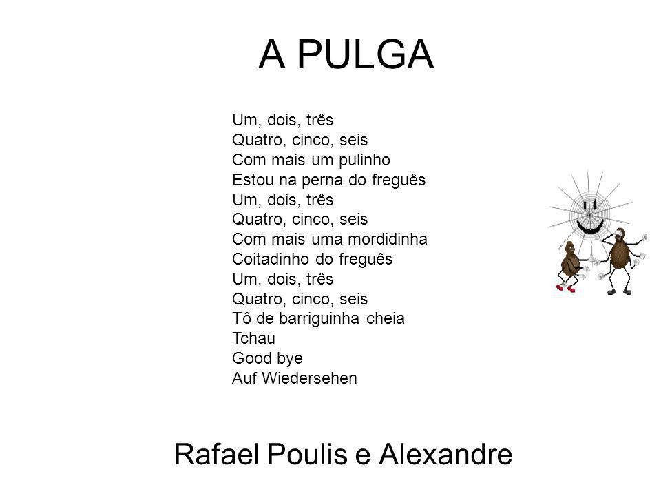 Rafael Poulis e Alexandre