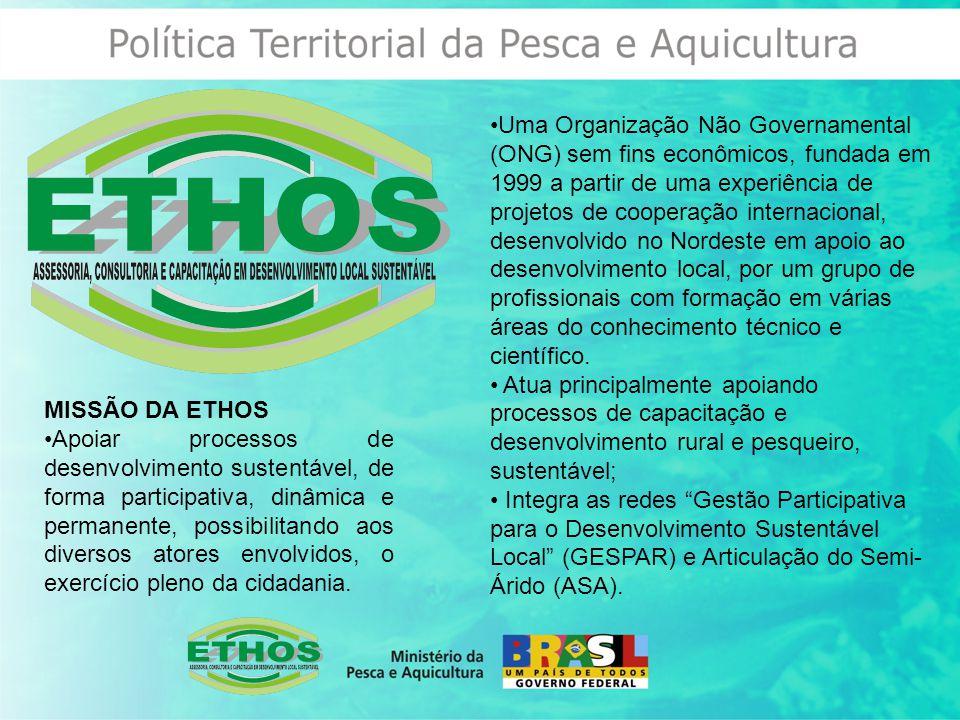 Uma Organização Não Governamental (ONG) sem fins econômicos, fundada em 1999 a partir de uma experiência de projetos de cooperação internacional, desenvolvido no Nordeste em apoio ao desenvolvimento local, por um grupo de profissionais com formação em várias áreas do conhecimento técnico e científico.