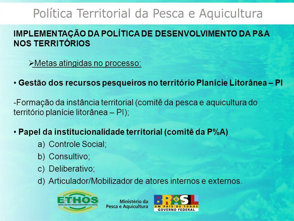 IMPLEMENTAÇÃO DA POLÍTICA DE DESENVOLVIMENTO DA P&A NOS TERRITÓRIOS  Metas atingidas no processo: Gestão dos recursos pesqueiros no território Planície Litorânea – PI -Formação da instância territorial (comitê da pesca e aquicultura do território planície litorânea – PI); Papel da institucionalidade territorial (comitê da P%A) a)Controle Social; b)Consultivo; c)Deliberativo; d)Articulador/Mobilizador de atores internos e externos.