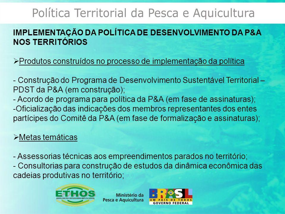 IMPLEMENTAÇÃO DA POLÍTICA DE DESENVOLVIMENTO DA P&A NOS TERRITÓRIOS  Produtos construídos no processo de implementação da política - Construção do Programa de Desenvolvimento Sustentável Territorial – PDST da P&A (em construção); - Acordo de programa para política da P&A (em fase de assinaturas); -Oficialização das indicações dos membros representantes dos entes partícipes do Comitê da P&A (em fase de formalização e assinaturas);  Metas temáticas - Assessorias técnicas aos empreendimentos parados no território; - Consultorias para construção de estudos da dinâmica econômica das cadeias produtivas no território;