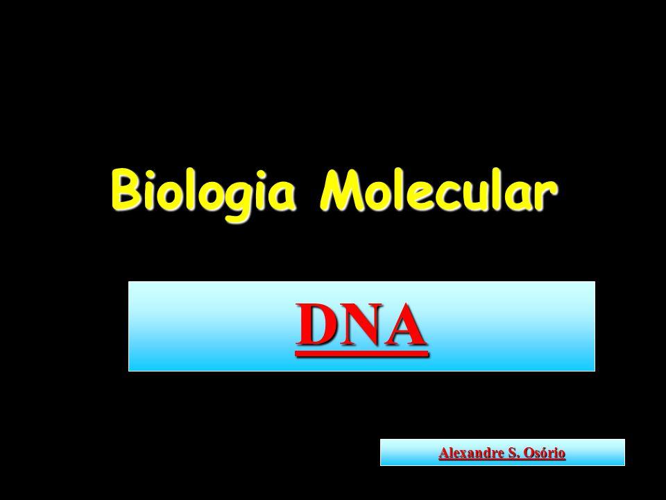 Biologia Molecular DNA Alexandre S. Osório