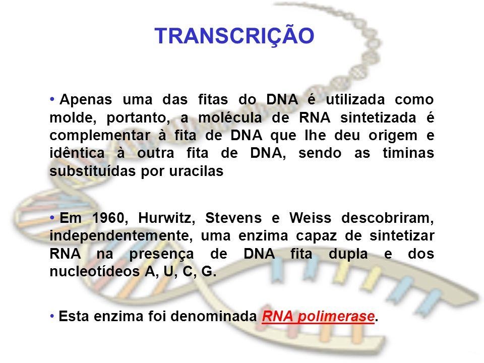 TRANSCRIÇÃO Apenas uma das fitas do DNA é utilizada como molde, portanto, a molécula de RNA sintetizada é complementar à fita de DNA que lhe deu orige